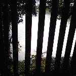 川の流れ(見にくいですが・・・)