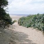 path to beach at berrow