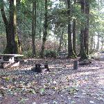 Example of a campsite at Mora Campground December 2008.