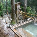 杉木立の中にお風呂は沢山あり