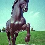 DaVinci's horse casts huge shade