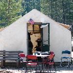 Tent Cabin #18
