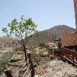 Foto de Aravali Silence Lakend Resort & ZO Rooms