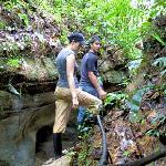 jungle hike.