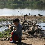 Roaming the Lake