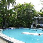 The Swimming Pool At Alexander Palms Court