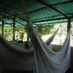 Photo of Campamento Bernal