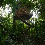 Our Lofty Lodging