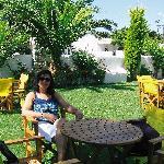 Angie's Studios garden