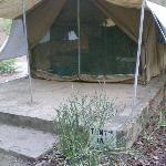 one of the safari tents