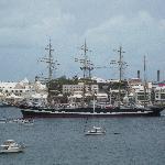 Tall ship sailing by Newstead