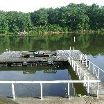 The Swim Dock