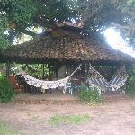 Breakfast and Lounge area under mango tree
