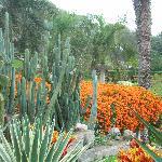 Gardens inside Zoo