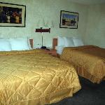 Room 249
