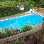 The Elmington Hotel pool