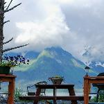 View from the picnic table at Cottage on the Bay, Lowell Point, Seward
