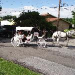 we had a Horse drawn Carriage!