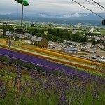 Choei Lavender Farm