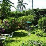 Royal Palms grounds