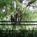 Photo of Residencia del Sol