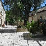 The street;  Avissar House is to the right, where the plants are