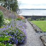 The alpine garden overlooking Sligo Bay