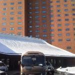 シャトルバスが広い敷地内のホテル、免税店、地下鉄駅近くまでを走ります