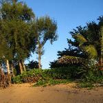 Hale Makai Beach