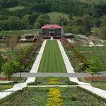 Yuni- Garden