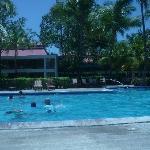 Refrescate en una de sus piscinas.