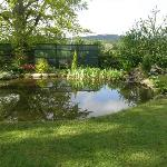 Beautiful gardens with pond
