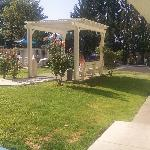 This is the pergola near the pool where my girls ate breakfast among the rosebushes