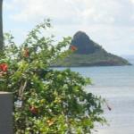 Hawaii!!!!