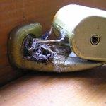 Bedroom widowcatch