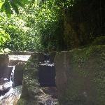 el agua fresca