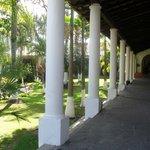 Hermosos jardines en la Hacienda Zimpizahua