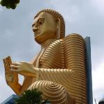 dambulla cave temple is the largest and best preserved cave temple complex in sri lanka