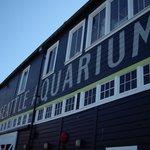 Aquarium is right next to the Harbor
