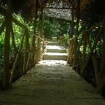 bridge over suncreek
