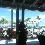 the view outside the lobby... the main pool & the salt water pool