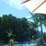 Foto de Hawks Cay Resort