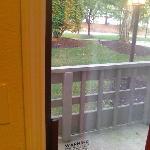 """View f from patio door facing """"park""""  area"""