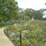 Kings Park and Botanic Garden Photo