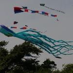 Newport, RI, United States New England Kite Festival