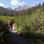 Beaver Meadows, Rocky Mountain National Park