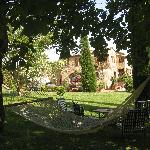 Grounds and hammock