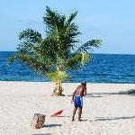 "Raking the beach ~~ & the ""shady palm"""