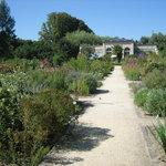 Medicinal Botanical Garden