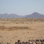 le desert derriere l'hotel vous pouvez louer des quads